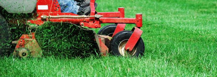 Lawn maintenance in Riverview FL