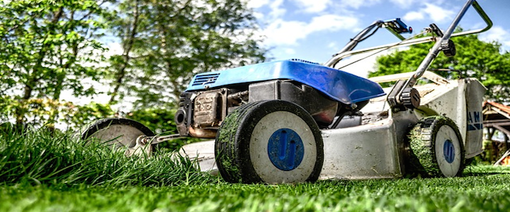Commercial lawn care in Tampa