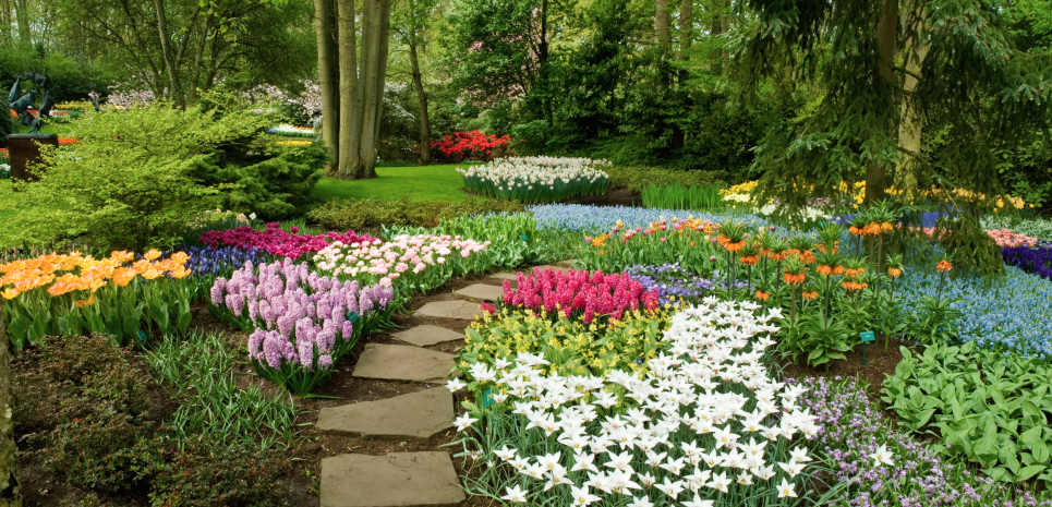 Landscaping Your Yard 10 landscape design ideas for your yard | your green team