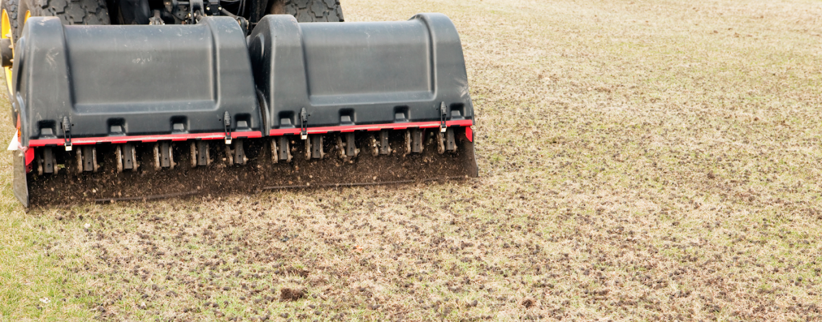 Lawn Aeration Riverview