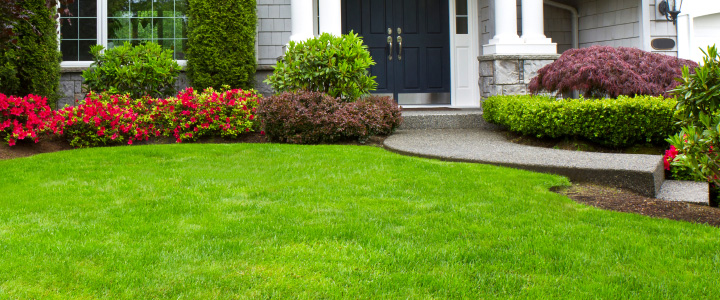 Lithia lawn care services