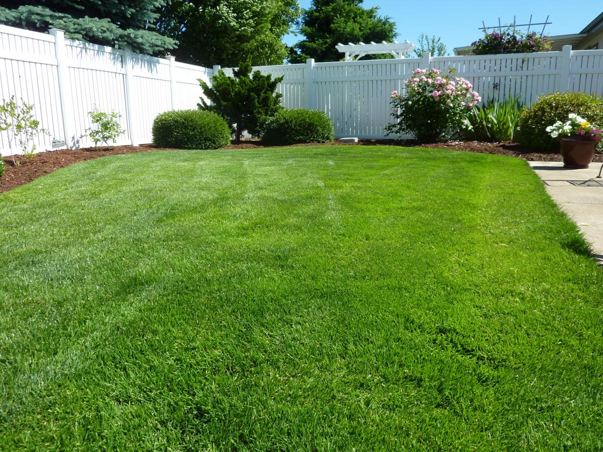 Lawn care in parrish fl your green team Yard and garden