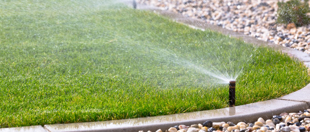 Lawn irrigation in Tampa