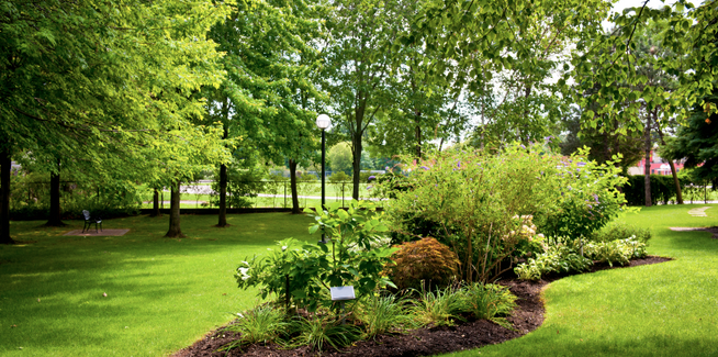 Lawn & Landscape Maintenance Ruskin