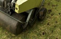 Aeration services in Florida