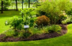 Landscape maintenance Florida