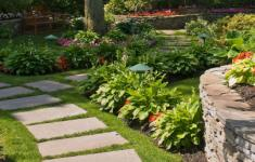 Lawn Care & Pest Control in Florida | Your Green Team