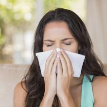 eliminate-indoor-allergy-triggers-tampa