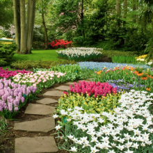 10 Landscape Design Ideas For Your Yard