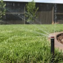 tips-for-properly-watering-your-lawn-in-summer